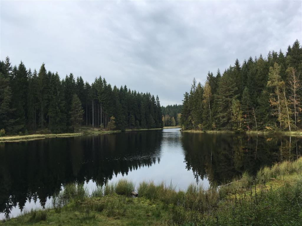 Wanderung zum Vogtlandsee - Ausflugstipp