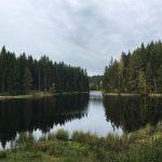 Wanderung zum idyllischen Vogtlandsee