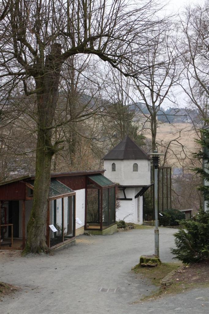 Ausflugsziel in Klingenthal Sachsen - Vogtland - Der Tierpark