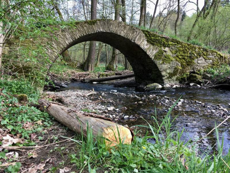 Sehenswürdigkeiten: Wanderung zur Schafbrücke im Kemnitzbachtal im Vogtland