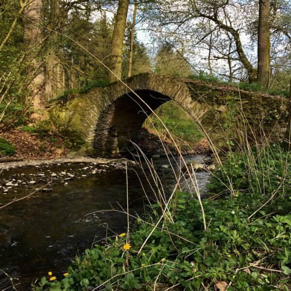 Ausflugtstipp: Wanderung zur romantischen Schafbrücke bei Geilsdorf im Kemnitzbachtal