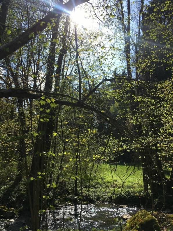 Wanderung durchs Burgsteingebiet / Vogtland / Sachsen
