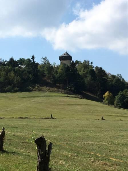 Wanderweg zur Ruine der Burg Hartenstein