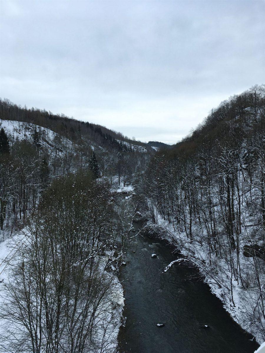 Wanderung durch das winterliche Elstertal zur Elstertalbrücke / Sachsen