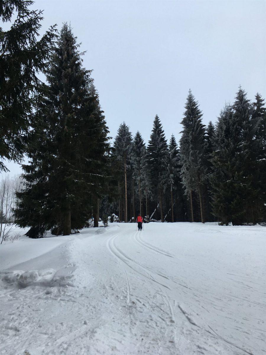 Ausflug im Winter nach Schöneck - Langlauf
