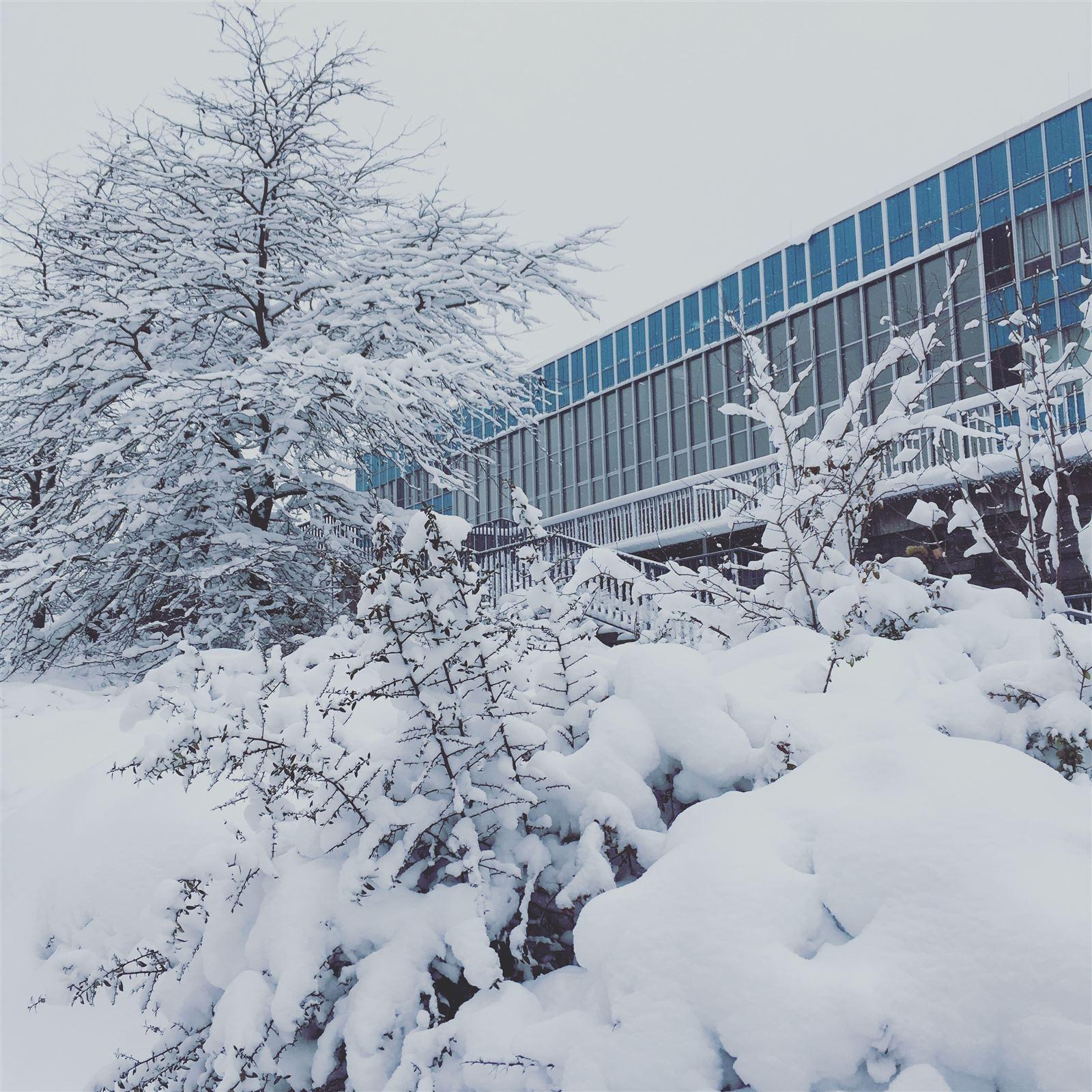 Ausflug in Sachsen - winterlicher Spaziergang durch Plauen