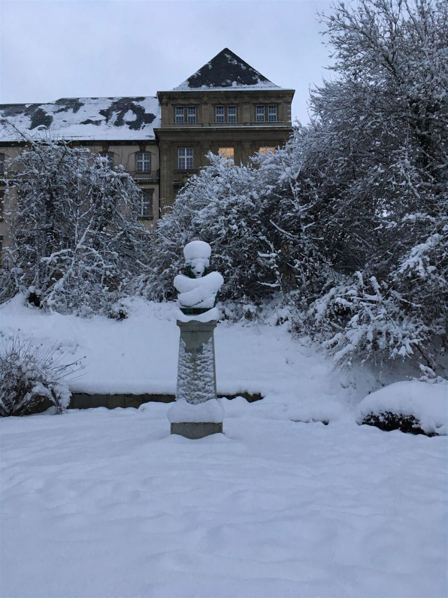 Winterausflug in Sachsen - winterlicher Spaziergang durch Plauen - Julius Mosen Büste