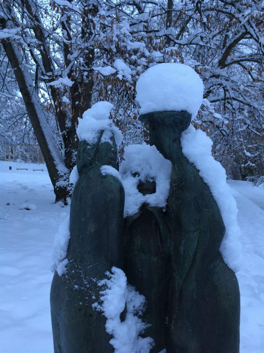 Winterausflug in Sachsen - winterlicher Spaziergang durch Plauen - Neideiteln