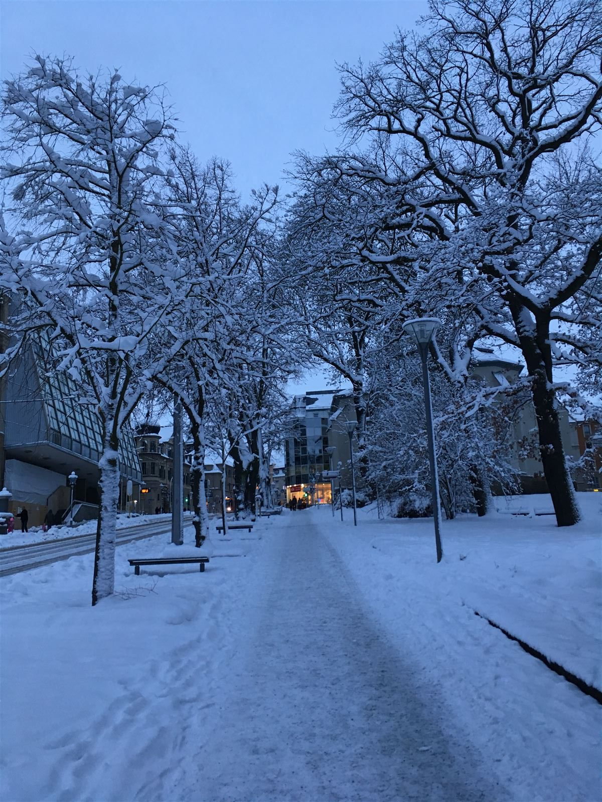 Winterausflug in Sachsen - winterlicher Spaziergang durch Plauen