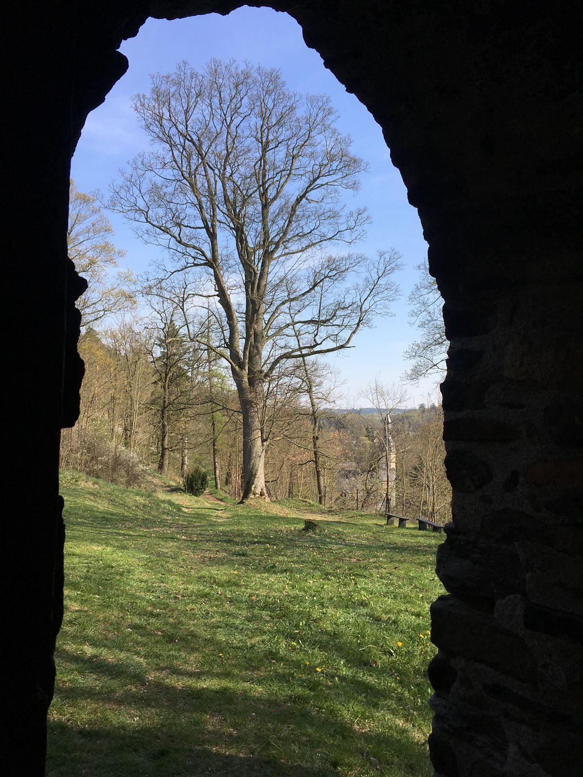 Ausflug zur Burgruine Wiedersberg im Vogtland / Sachsen