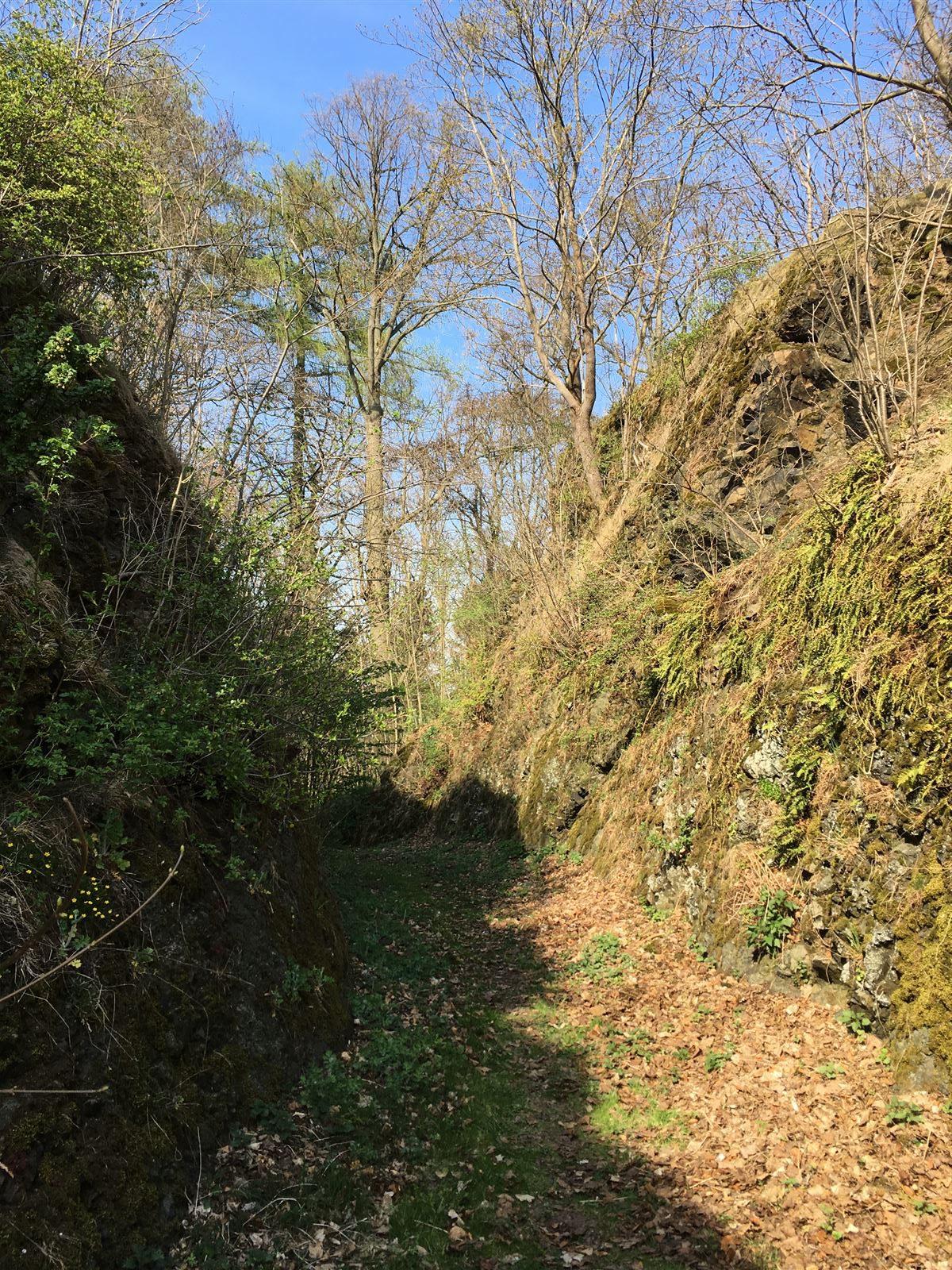 Ausflug zur Ruine der Burg Wiedersberg im Vogtland / Sachsen
