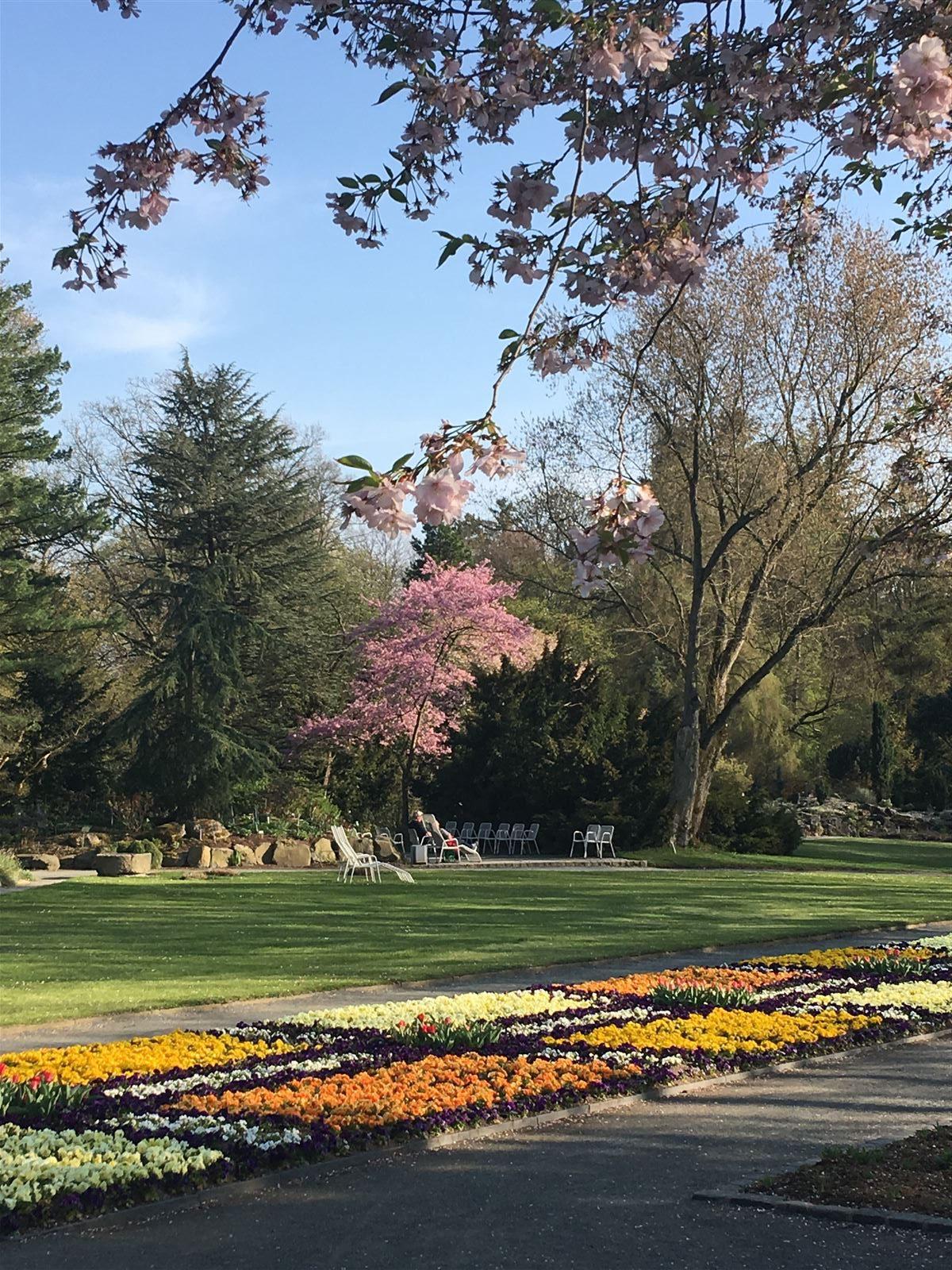Erholung im Botanischen Garten im Theresienstein in Hof in Bayern