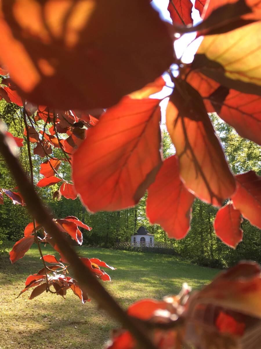 Ausflug: Landschaftspark Ebersdorf - Thüringen - nahe der Bleilochtalsperre