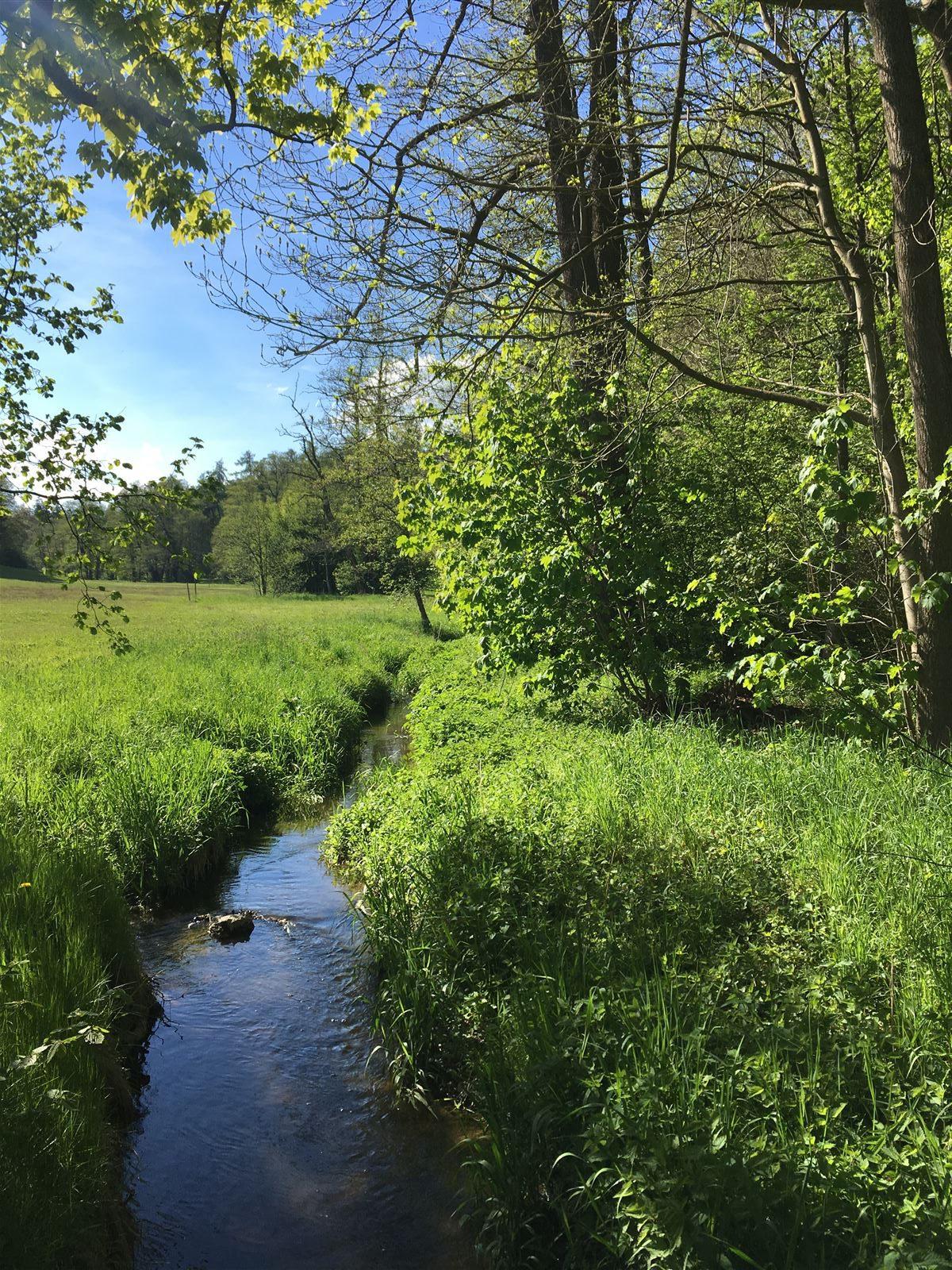 Idyllische Wege im Landschaftspark am Schloss Ebersdorf