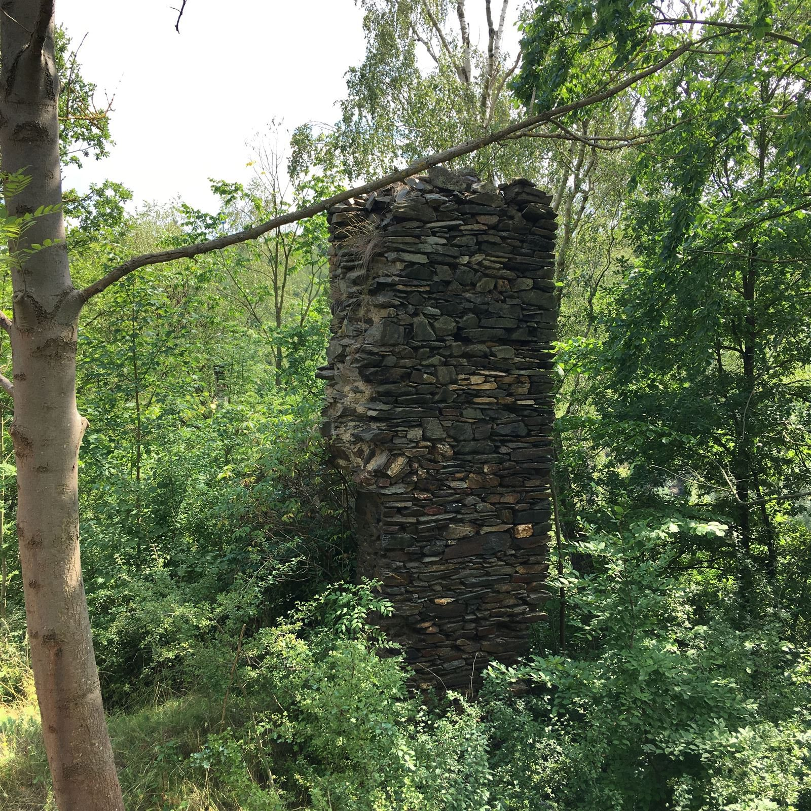 Die Ruine der Burg Sparnberg