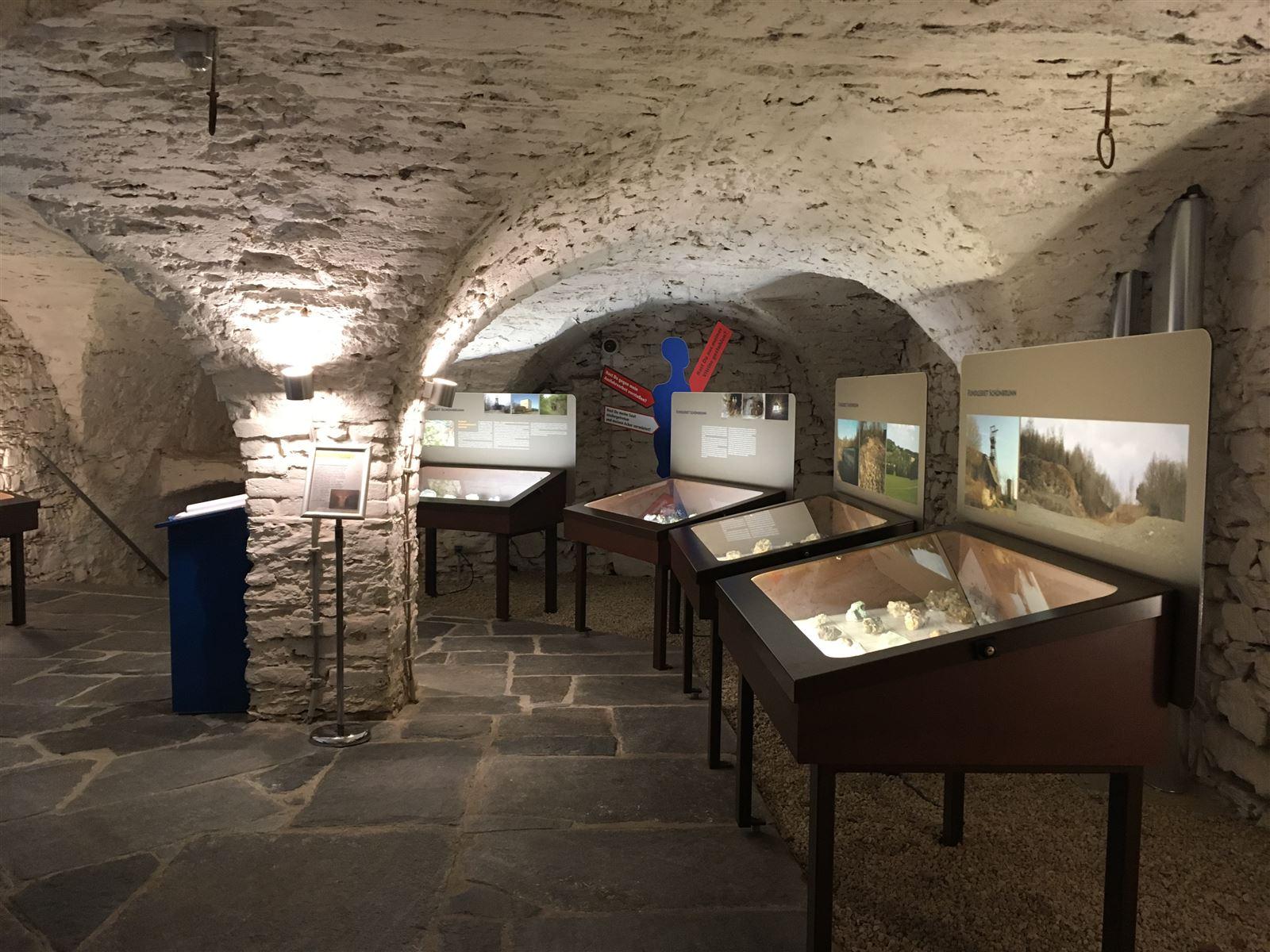Burgkeller mit der Mineraliensammlung