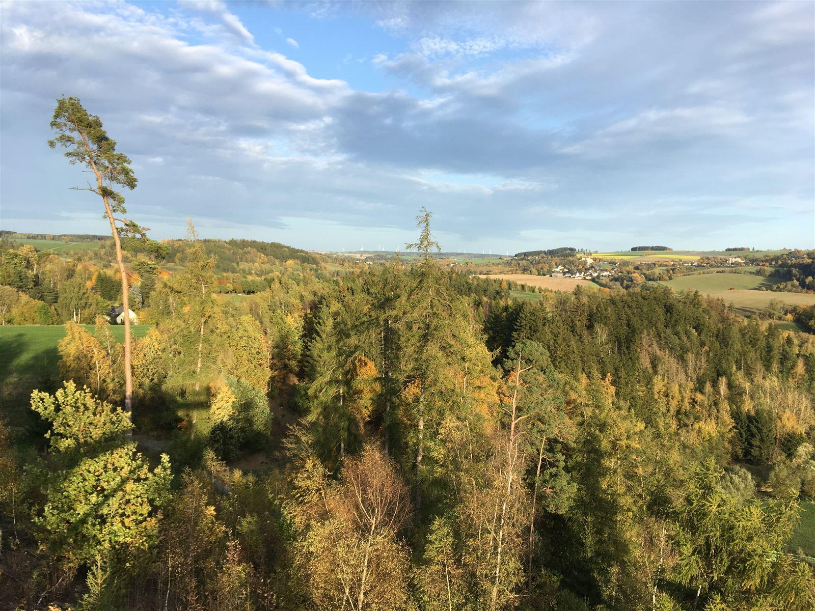 Blick ins Tal der Oberen Saale