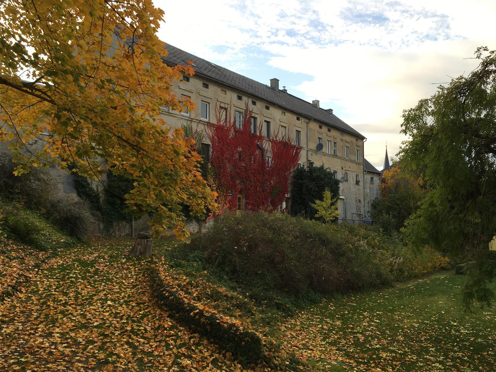 Der Schlossgarten