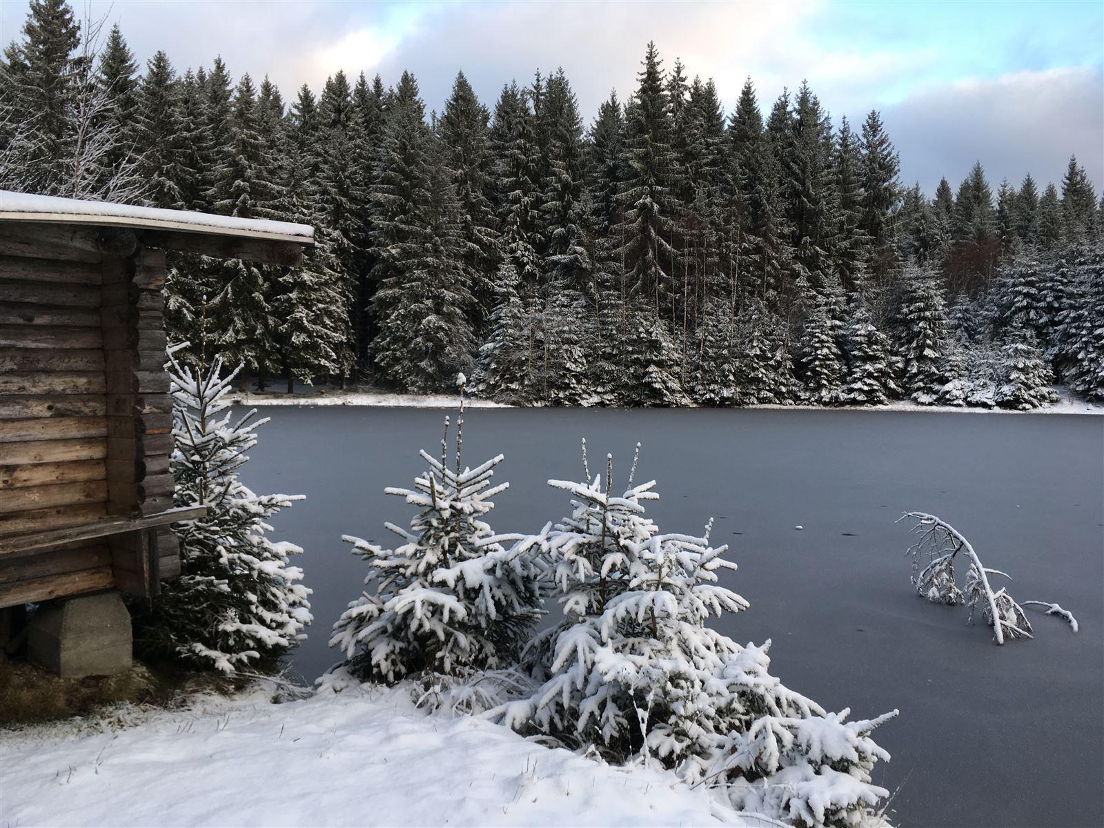 Winterwanderung von der Talsperre Muldenberg zum Sauteich  (Vogtland / Sachsen)