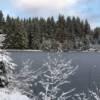 Winterwanderung von der Talsperre Muldenberg zum Sauteich