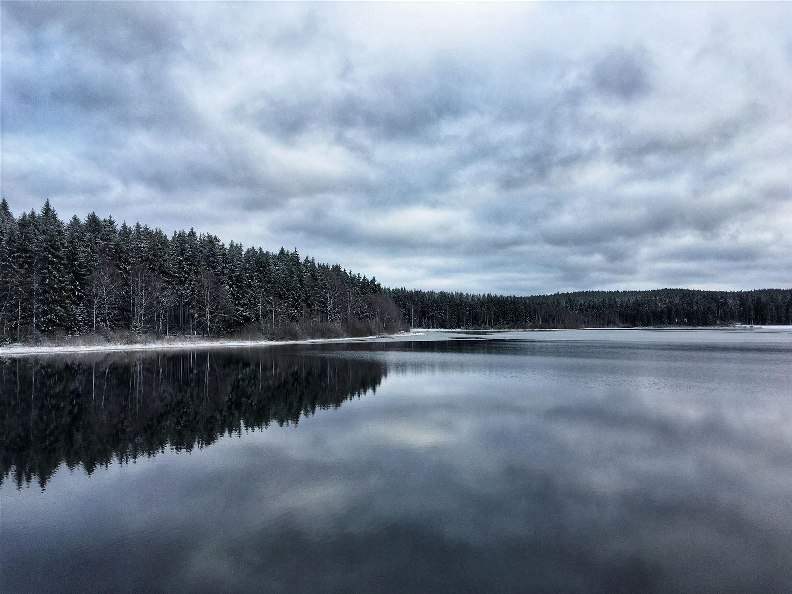 Talsperre Muldenberg im Winter